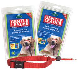 Gentle Dog Leader