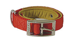 Luxury Padded Dog Collar