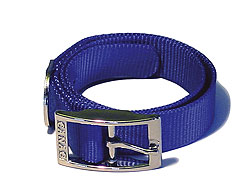 Single Dog Collar