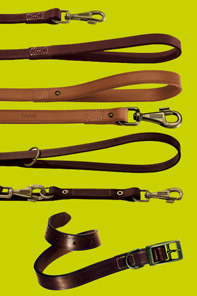 VIP Leads and Collars